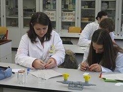 Schüler bei Untersuchungen im Labor